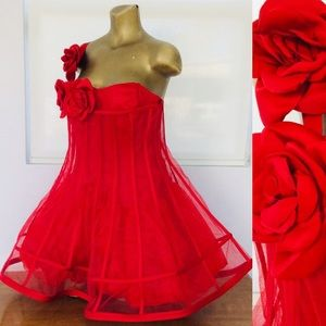 NWT CINDERELLA Red Roses Crinoline CORSET DRESS XL